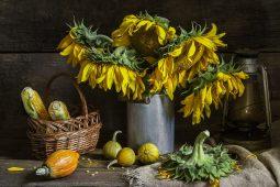 Fotografia Still Life: 9 Suggerimenti per creare splendide foto che sembrano dipinti