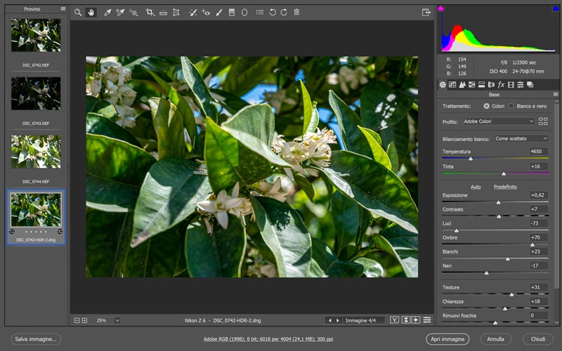 foto hdr in camera RAW